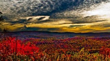 Fall Foliage Mountain Sunrise