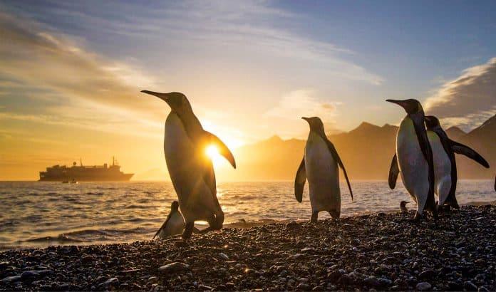 Lindblad Expeditions Returns to Antarctica in 2021